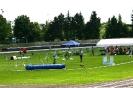 Agilityturnier in Haunstetten am 21.06.2008  _1