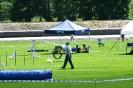 Agilityturnier in Haunstetten am 21.06.2008  _2