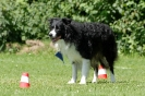 Deutsche Meisterschaft Obedience 2009