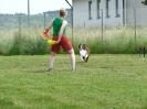 DiscDog-Vorführung bei den Hundefreunden Eggenfelden am 01.06.2008 _1