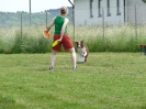 DiscDog-Vorführung bei den Hundefreunden Eggenfelden am 01.06.2008 _3