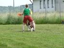 DiscDog-Vorführung bei den Hundefreunden Eggenfelden am 01.06.2008 _6